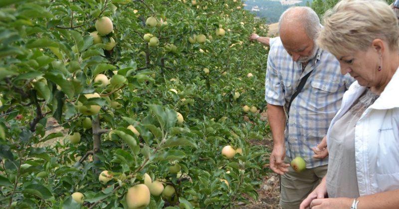 Start50+ Çiftçi Değişimi projesi – 2013