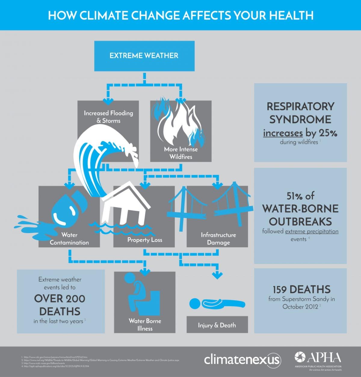 İklim Değişikliği ve Sosyal Yardımlaşma Çalıştayı – 2011